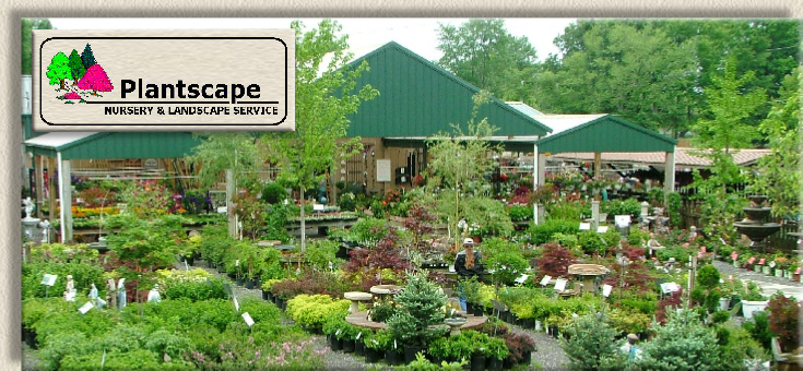 Plantscape Nursery And Landscape